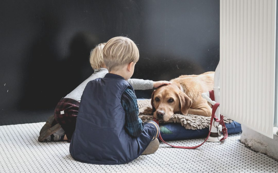 Teaching Your Kids and Pets to Interact Safely