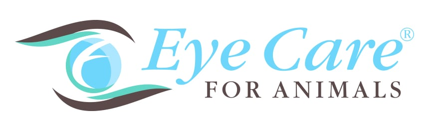 Logo Eye Care for Animals FC H